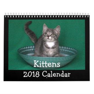 2018 Kitten Calendar