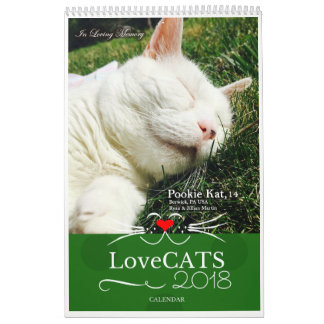 2018 LoveCATS Calendar 'Sweet Dreams' Special Ed.