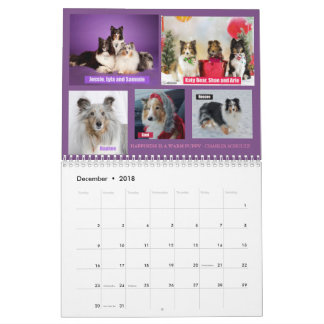 2018 Minnesota Sheltie Rescue Calendar