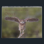 """2018 North American Owl Wall Calendar<br><div class=""""desc"""">Owls are one of my favorite subjects to photograph, and I spend several hours a week throughout the year looking for them. This calendar features beautiful images of barred, burrowing, eastern screech, great gray, great horned, long-eared, saw-whet, short-eared and snowy owls. I hope you enjoy this calendar as much as...</div>"""