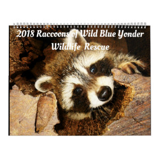2018 Raccoons of Wild Blue Yonder Wildlife Rescue Calendar