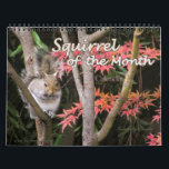 """2018 Squirrel Wall Calendar<br><div class=""""desc"""">Enjoy 12 cute gray and black squirrels going about their daily routine. Makes a delightful Christmas gift for the animal and wildlife lover.</div>"""