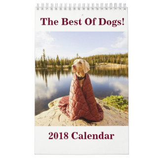 2018 The Best Of Dogs! Calendar