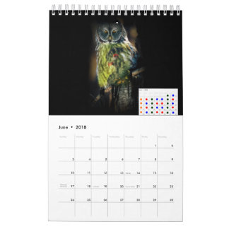 2018 THE MAGIC BIRDS CALENDAR