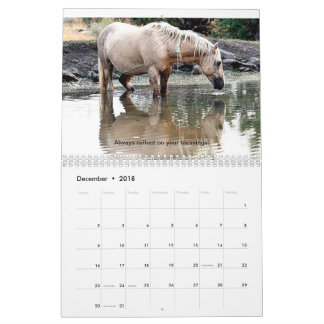 2018 WILD MUSTANG CALENDAR WITH QUOTES