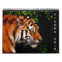 2019 Beautiful Wild Tigers 12-Month Wall Calendar