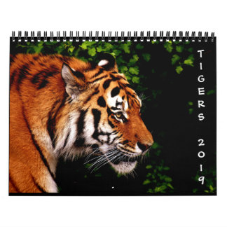 2019 Beautiful Wild Tigers 12-Month Wall Calendar