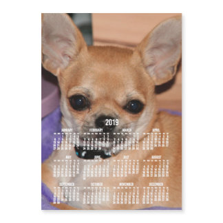 2019 Calendar Chihuahua Magnetic Photo Card 5x7