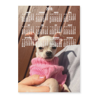 2019 Calendar Chihuahua Photo Magnetic Card 5x7