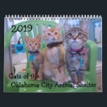 """2019 Cats of the Oklahoma City Animal Shelter Calendar<br><div class=""""desc"""">All of these cats &amp; kittens were in adoption at the OKC Animal Shelter.  They have all been adopted into new homes.  All proceeds from sales go to the animals at the OKC Animal Shelter to make their time there more comfortable</div>"""