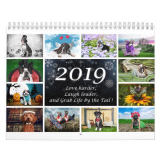 2019 Dog Calendar
