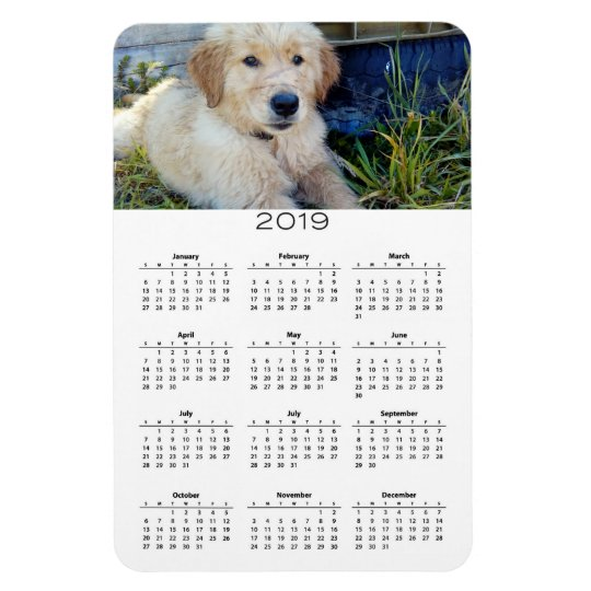 2019 Dog Calendar Flexible Photo Magnet Zazzle Com