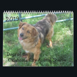 """2019 Dogs of the Oklahoma City Animal Shelter Calendar<br><div class=""""desc"""">All of these dogs were in adoption at the OKC Animal Shelter. They have all been adopted into new homes. All proceeds from sales go to the animals at the OKC Animal Shelter to make their time there more comfortable.</div>"""
