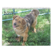 2019 Dogs of the Oklahoma City Animal Shelter Calendar