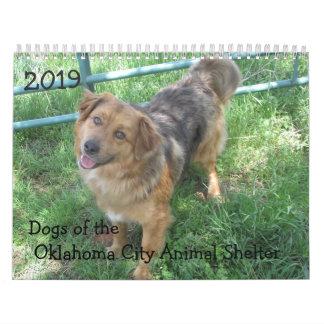 2019 Dogs of the Oklahoma City Animal Shelter Calendar