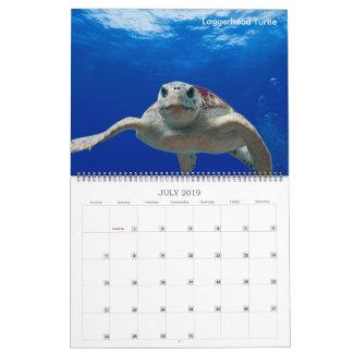 2019 Endangered Species Calendar