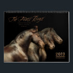 "2019 Forest Boyz Calendar<br><div class=""desc"">Do you wonder if there is such a thing as heaven on earth? There is… meet the Forest Boyz. Meike, Menno and Saphire are Friesian stallions that live free in a bachelor herd in the forests of the northern California coast. They have been together since they were yearlings and their...</div>"