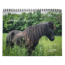 2019 Icelandic Horse Calendar