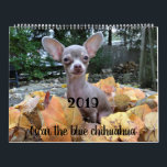 "2019 Oscar the blue chihuahua calendar<br><div class=""desc"">Get a daily dose of Oscar all year long!</div>"