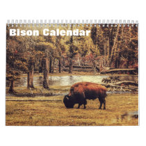2020 Bison Buffalo Calendar