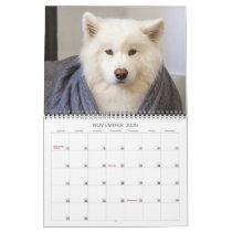 2020 Coconut Rice Bear Calendar