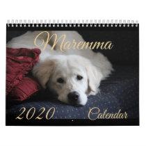 2020 Maremma Calendar