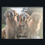 """2020 ParkerPup & Friends Golden Retriever Calendar<br><div class=""""desc"""">If you like dogs, golden retrievers, or Internet-famous bundles of fluff, this calendar is for you. Join ParkerPup, along with his brothers, Reser & Gill, and a few friends along the way in a year of commercials, live theater performances, birthday milestones and more. It doesn"""