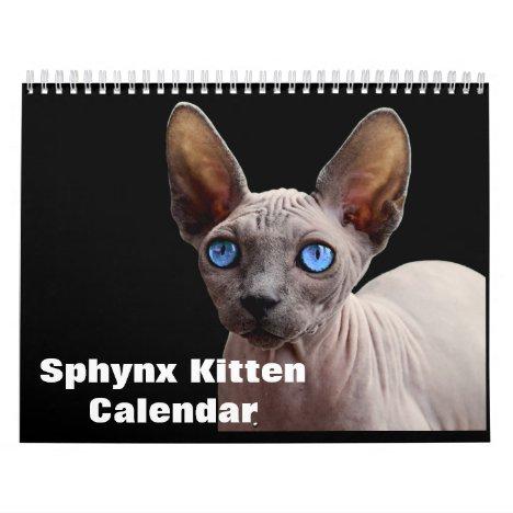 2020 Sphynx Kitten Calendar