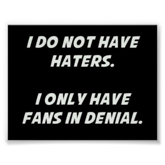 2047315 DONT HAVE HATERS JUST FANS DENIAL FUNNY CO POSTER
