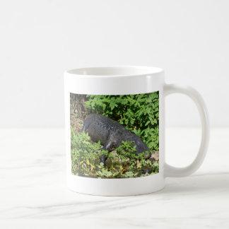 204a gator Silver River Coffee Mug