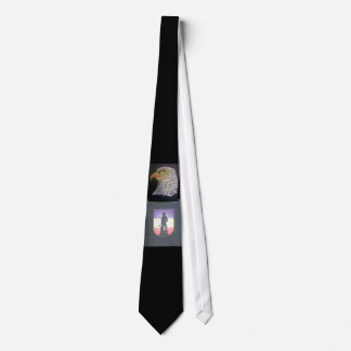 209TH REGIONAL TRAINING INSTITUTE NECK TIE