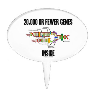 20,000 Or Fewer Genes Inside (DNA Replication) Cake Topper
