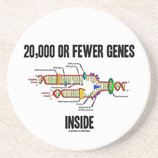20,000 Or Fewer Genes Inside (DNA Replication) Drink Coaster