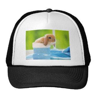 20_baby_animals (4) BABY BUNNY RABBIT blue greens Trucker Hat
