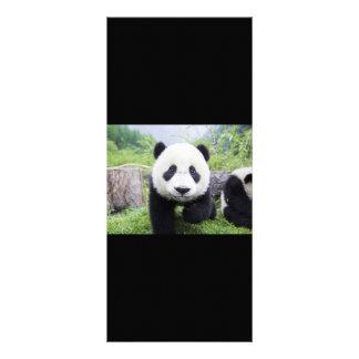 20_baby_animals 9 CUTE PANDA CUB WILD ANIMALS Customized Rack Card