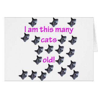 20 cabezas del gato viejas tarjeta de felicitación