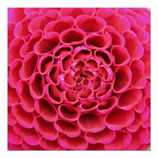 """20"""" x20"""", las rosas fuertes del papel de poster perfect poster"""
