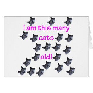 21 cabezas del gato viejas tarjeta de felicitación