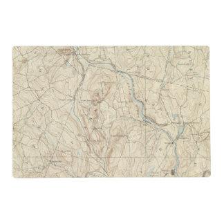 21 Norwich sheet Placemat