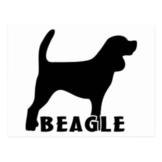 2215042007 Beagle (Animal) Postcard