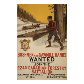 224th Canadian Forestry battalion 1915 Poster