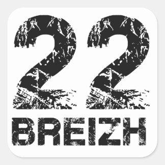 22 Breizh Pegatina Cuadrada