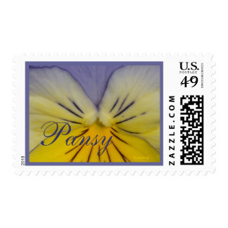 22 Pansy Blue Yellow Postage