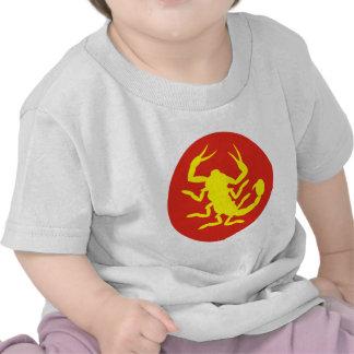 22do Identificación Camisetas