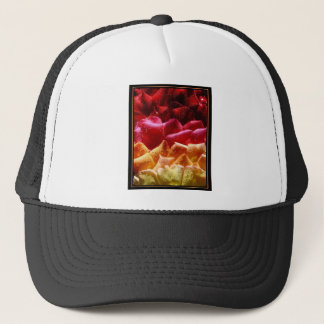 2342695-lg.jpg trucker hat