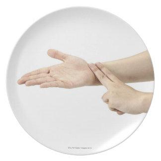 23554090 DINNER PLATE