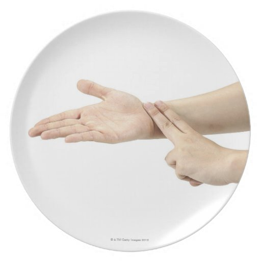 23554090 PARTY PLATE