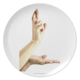 23554092 DINNER PLATE