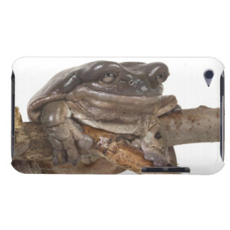 23568138 BARELY THERE iPod CASE