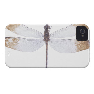 23640349 iPhone 4 Case-Mate CASE